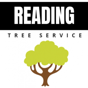 Reading tree Service Logo